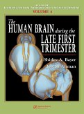 The Human Brain During the Late First Trimester (eBook, PDF)