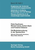 Die Muskelanordnung in der Speiseröhre (eBook, PDF)