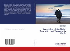 Association of Hsp90ab1 Gene with Heat Tolerance in Cattle