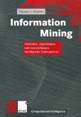 Information Mining (eBook, PDF)