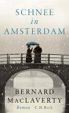 Schnee in Amsterdam (eBook, ePUB)