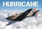 Hurricane (eBook, PDF)