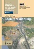 Geofernerkundung (eBook, PDF)