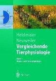 Vergleichende Tierphysiologie (eBook, PDF)