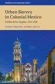 Urban Slavery in Colonial Mexico (eBook, PDF)