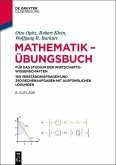 Mathematik - Übungsbuch (eBook, PDF)