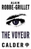 Voyeur (eBook, ePUB)
