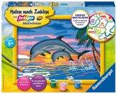 Paradies der Delfine / Malen nach Zahlen - Jeder kann malen (Mal-Sets), Bildgröße: 18 x 24 cm