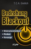 Bedrohung Blackout (eBook, ePUB)