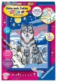 Süße Wolfsfamilie / Malen nach Zahlen - Jeder kann malen (Mal-Sets), Bildgröße: 13 x 18 cm