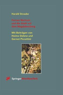 Ferrum Noricum und die Stadt auf dem Magdalensberg (eBook, PDF) - Straube, Harald