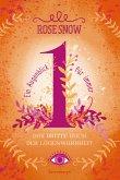 Ein Augenblick für immer. Das dritte Buch der Lügenwahrheit / Lügenwahrheit Bd.3 (eBook, ePUB)