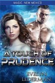 A Touch of Prudence: Magic's Destiny