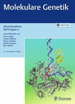 Molekulare Genetik (eBook, PDF)