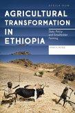 Agricultural Transformation in Ethiopia (eBook, ePUB)