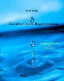 Das Leben eines Regentropfens (eBook, ePUB)