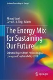 The Energy Mix for Sustaining Our Future