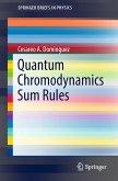 Quantum Chromodynamics Sum Rules (eBook, PDF)