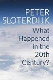 What Happened in the Twentieth Century? (eBook, ePUB)