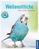 Wellensittiche (Mängelexemplar)
