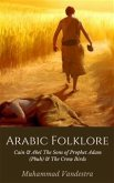 Arabic Folklore (eBook, ePUB)
