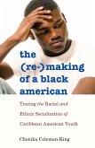 The (Re-)Making of a Black American (eBook, ePUB)