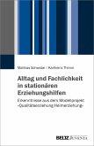 Alltag und Fachlichkeit in stationären Erziehungshilfen (eBook, PDF)