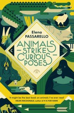 Animals Strike Curious Poses - Passarello, Elena