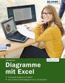 Diagramme mit Excel (eBook, PDF)