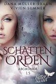 Abgründe / Schattenorden Bd.1.5 (eBook, ePUB)