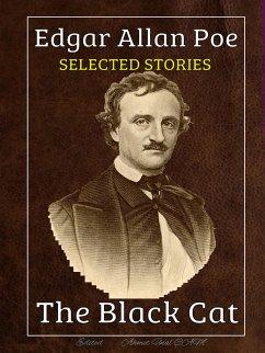 Edgar Allan Poe - Selected Stories (eBook, ePUB)