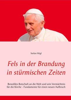 Fels in der Brandung in stürmischen Zeiten (eBook, ePUB) - Högl, Stefan