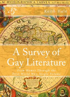 A Survey of Gay Literature (eBook, ePUB)