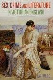 Sex, Crime and Literature in Victorian England (eBook, PDF)