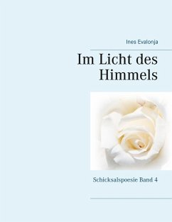 Im Licht des Himmels (eBook, ePUB)