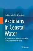 Ascidians in Coastal Water