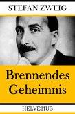 Brennendes Geheimnis (eBook, ePUB)