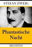 Phantastische Nacht (eBook, ePUB)