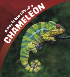 A Day in the Life of a Chameleon - Amstutz, Lisa J.