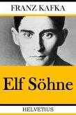 Elf Söhne (eBook, ePUB)