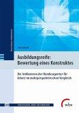 Ausbildungsreife: Bewertung eines Konstruktes (eBook, PDF)