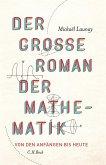 Der große Roman der Mathematik (eBook, ePUB)