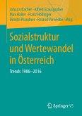 Sozialstruktur und Wertewandel in Österreich (eBook, PDF)