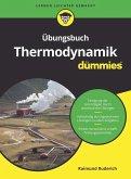 Übungsbuch Thermodynamik für Dummies (eBook, ePUB)