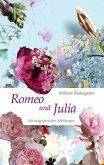 Romeo und Julia (Nikol Classics) (eBook, ePUB)