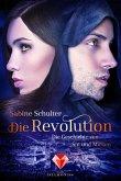 Die Revolution / Die Geschichte von Sin und Miriam Bd.3 (eBook, ePUB)