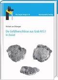 Die Gefäßverschlüsse aus Grab N13.1 in Assiut