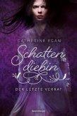 Der letzte Verrat / Schattendiebin Bd.3
