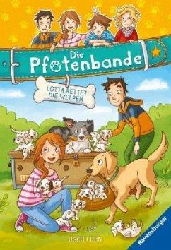 Lotta rettet die Welpen / Die Pfotenbande Bd.1 - Luhn, Usch
