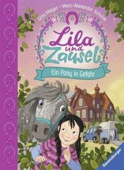 Ein Pony in Gefahr / Lila und Zausel Bd.2 - Mayer, Gina